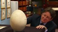 Riesiges Ei soll versteigert werden