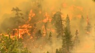 Großes Feuer in der Nähe von Los Angeles