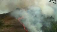 Feuerwehr kämpft gegen Waldbrände in sieben Bundesstaaten