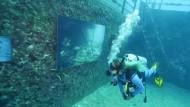 Kunst unter Wasser