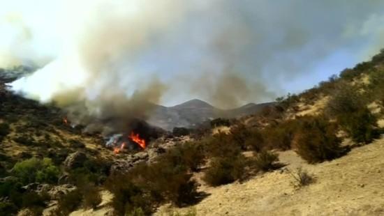 Feuerwehrleute kämpfen weiter gegen Buschfeuer