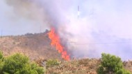 Waldbrand wütet nahe Barcelona