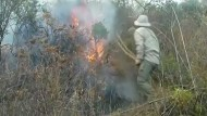 Flächenbrand bedroht Naturschutzreservat