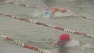 Frostfeste Schwimmer suchen den Eiskönig vom Chiemsee
