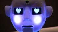 Humanoide Roboter geben sich die Ehre