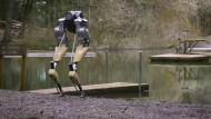Viele Einsatzmöglichkeiten für laufende Roboter