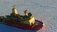 Drachenhaut-Eis in der Antarktis gesichtet