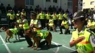 Polizeihunde verabschieden sich mit Pomp in den Ruhestand