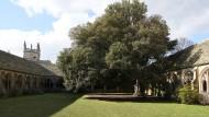 Am New College in Oxford betreut Robin Lane Fox neben seiner akademischen Arbeit auch den stets bestens gepflegten Garten.