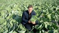 Der klügste Minister hat die größten Kohlköpfe. Robert Habeck will nicht nur Aufruhr im Gemüsebeet, sondern auch in der grünen Partei