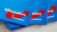 Die AfD hat unter Deutschen mit Migrationshintergrund wenig Anhänger – eine neue Gruppe will das ändern.