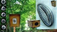 Pilze als Internet: Der Waldkunstpfad in Darmstadt lädt zu interessanten Vergleichen ein.