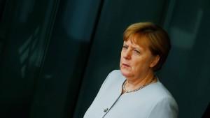 AfD gibt Merkel die Schuld am Brexit
