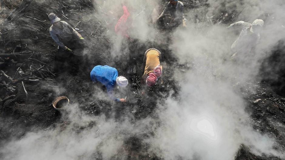 Die Köhler prüfen mit bloßen Händen die Kohle. Der Rauch stört mich nicht mehr. Ich habe mich während der 35 Jahre, die ich hier arbeite, daran gewöhnt, meint ein Arbeiter.