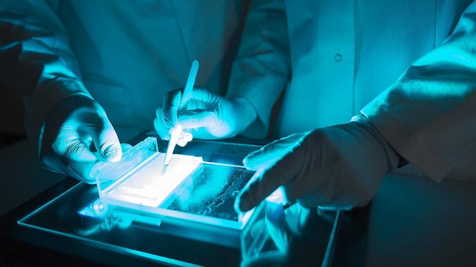 Das Mainzer Pharmaunternehmen Biontech ist auch für Krebsforschung bekannt.