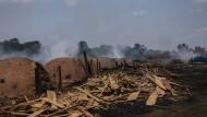 Unaufhaltsame Ausbeutung: Große Flächen des Amazonasgebietes werden illegal gerodet und die wertvollen Tropenhölzer verkauft.