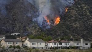 Es gibt ein Mittel gegen Waldbrand