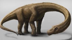 Neuer Riesensaurier hatte Gewicht einer Elefantenherde
