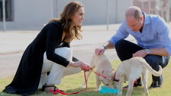 William und Kate besuchen Schule für Militärhunde