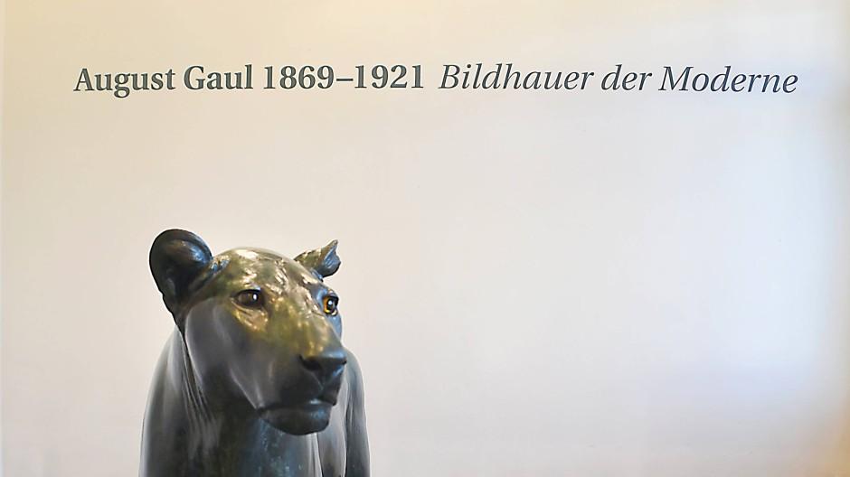 Vor der Reise: Die Löwin, die in der Ausstellung zum 150. Geburtstag Gauls zu sehen war, ist derzeit in Bern.