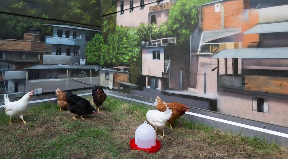 Und sonntags auch mal zwei: Im Hof des Main-Atriums gibt es einen Hühnerstall.
