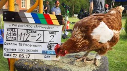 """Streit um totes Fernseh-Huhn """"Sieglinde"""""""