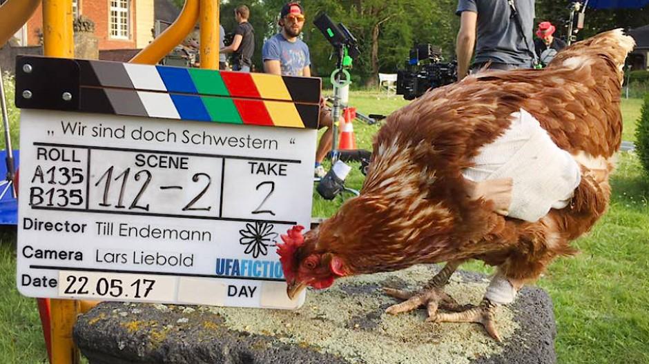Das Huhn Sieglinde 2017 bei Dreharbeiten zum Film Wir sind doch Schwestern.