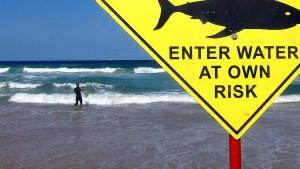 Internationaler Surf-Wettbewerb abgebrochen