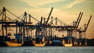 Deutsche Forscher warnen vor Handelskrieg