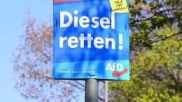 AfD entdeckt das Thema Klimawandel für sich