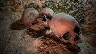 Krebsdiagnose nach 4000 Jahren