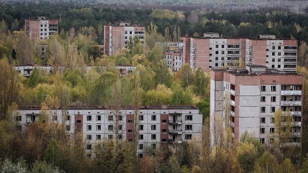 Tschernobyl-Schutzzone wird Biosphärenreservat