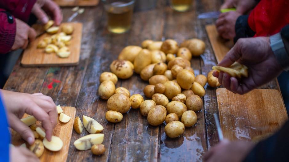 Teilnehmer der Aktion gegen Lebensmittelverschwendung verarbeiten die nachträglich geernteten Kartoffeln zu einer Suppe.