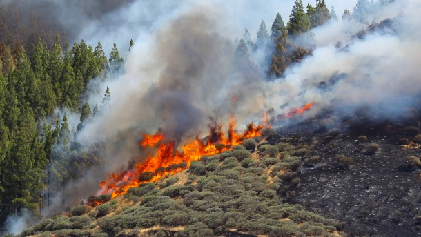Waldbrand auf Urlaubsinsel dauert an