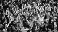 Warum die Grünen über die Wiedervereinigung streiten