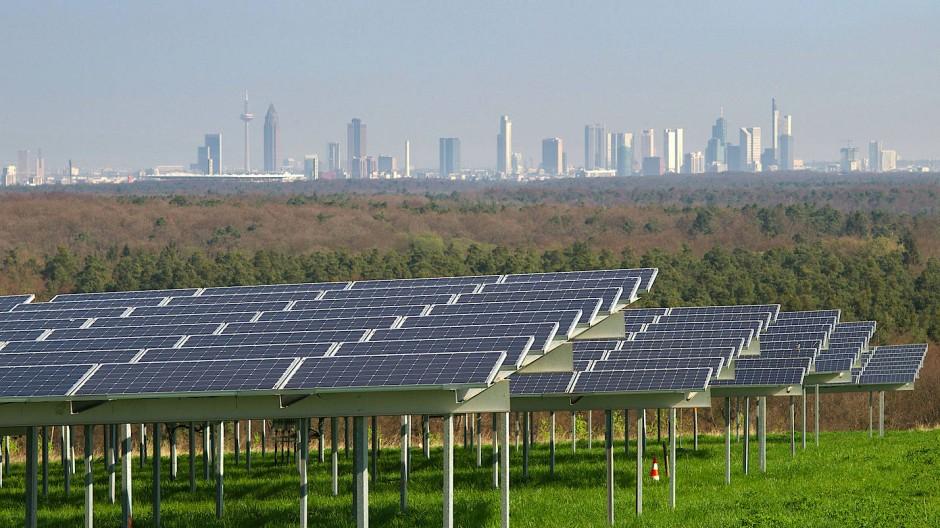 Der Sonne zugewandt: In Niedernhausen soll ein Solarpark entstehen, wie es ihn in Dreieich-Buchschlag schon gibt.