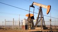 Welche Entwicklungen bringt der niedrige Ölpreis mit sich? Kommen jetzt wieder dicke Autos in Mode?