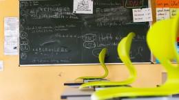 Schülervertreter fordern bundesweite Sommerschule