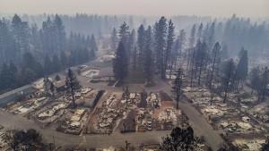Waldbrände treiben Energieriesen in Bankrott