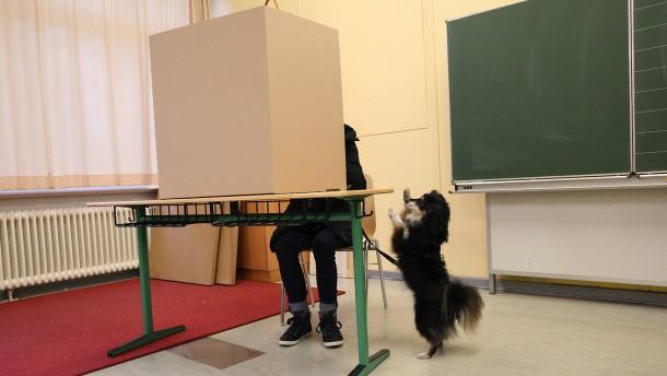 Die Hundejahre der SPD