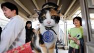 Japan trauert um Bahnhofsvorsteherin Tama