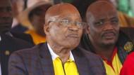 Zuma übersteht Misstrauensvotum