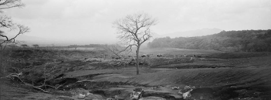 Ein kahler Baum steht inmitten von Asche, Felsbrocken und Geröll als Überreste einer schnell fließenden, heißen Brühe.