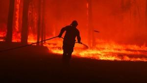 Waldbrände weiten sich aus