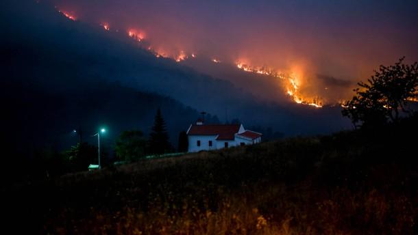 Waldbrände im Zentrum von Portugal