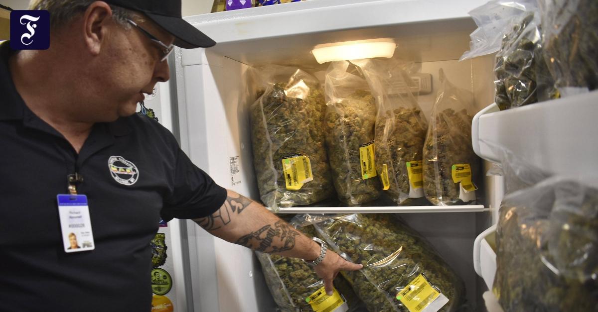 Repräsentantenhaus stimmt für Marihuana-Legalisierung