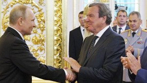 """Grüne kritisieren Schröder als """"Claqueur"""" für Putin"""