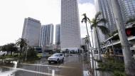 Sunstate: die Innenstadt von Miami unter Wasser