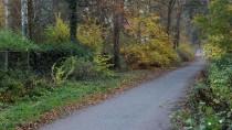 Ein Tatort: der Siebenendenweg in Berlin-Zehlendorf. Im Sommer 1995 hat Erik H. hier eine junge Joggerin vergewaltigt