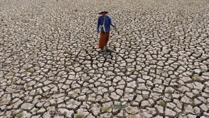 Schlimmste Trockenheit seit Jahrzehnten